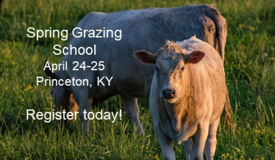 2018 Grazing School