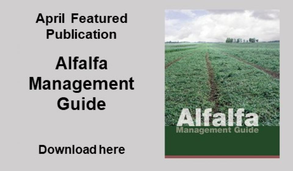 Alfalfa Management Guide