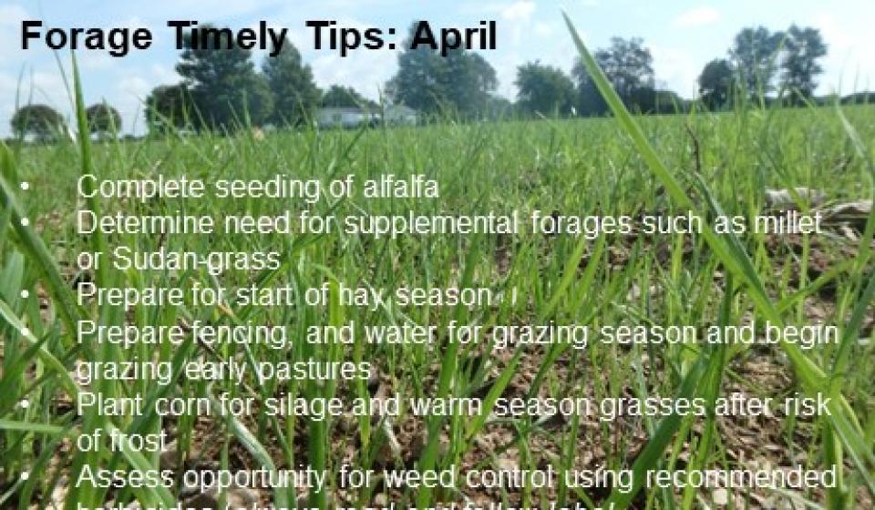Forage Timely Tips: April